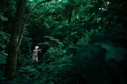 people, man, woods, forest, travel, adventure, costume, white, helmet, green, trees, leaves