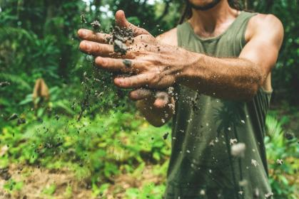 soil, dirty, hand, people, man, guy, outdoor, green, grass, plants, nature