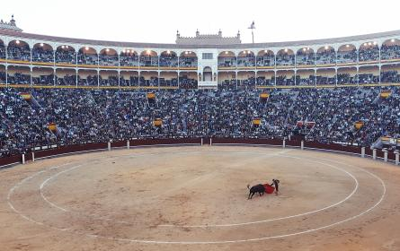 matador, bullfighter, torero, red, cape, ring, stadium, crowd, madrid, spain, flag, circle, spectators