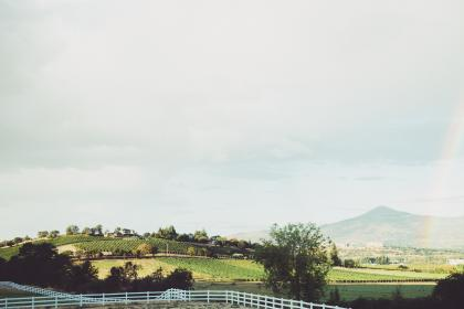 vineyard, farm, country, grass, fields, plains, mountains, sky, clouds, fence, trees, rainbow