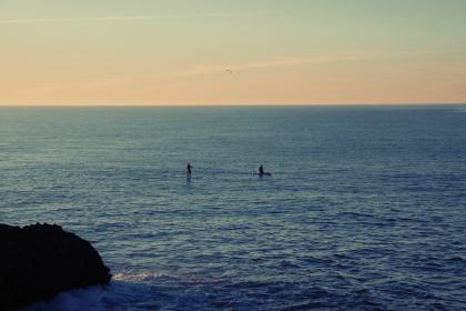 water, ocean, sea, paddle boarding, paddle boarders, sunset, sky