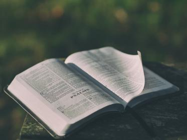 still, items, things, book, bible, psalms, pages, open, leaves, read, lines, bokeh, white