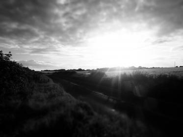 black and white, clouds, sky, sunshine, fields, nature, trees