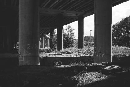 architecture, infrastructures, bridge, expressways , posts, beams, trees, black and white, lines, patterns, perspective