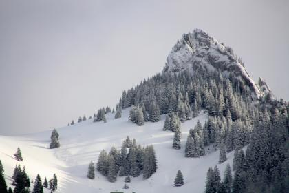 nature, alps, mountains, snow, trees, winter