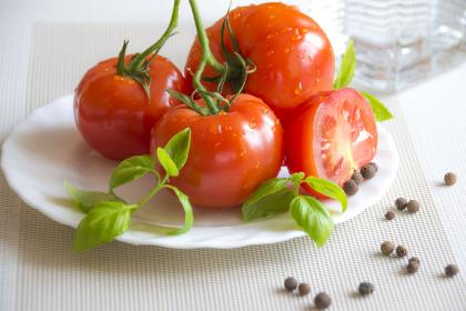 tomato, plant, crops, fruit, red, plate, fresh, leaves, green, table, kitchen, ingredient, food