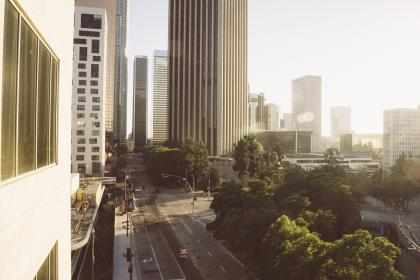 buildings, city, downtown, streets, roads, trees, sunshine, towers