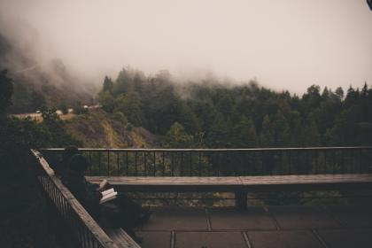 grey, sky, fog, reading, book, people, sitting, wood, bench, railing, trees, hills
