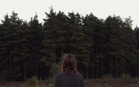 woods, trees, woodland, forest, outdoors, girl, woman, people, nature