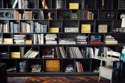 bookshelf, shelves, books, albums, records, lps, speakers, equipment, toys, memorabilia, wood, desk, chair, figurines