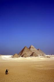 egypt, desert, animals, camels, sand, structures, architecture, pyramid, sky, blue, yellow