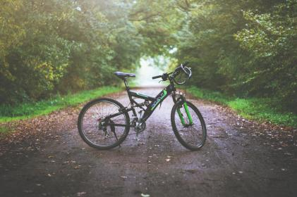 bike, bicycle, outdoor, path, green, grass, trees, plant, nature