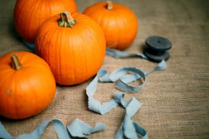 Photo of pumpkin crafts