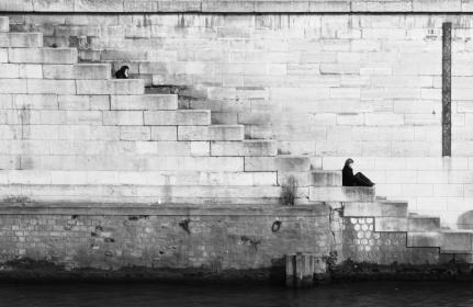 black and white, brick, stairs, woman, sitting, wall, water