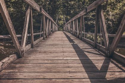 wood, bridge, water, trees, nature, outdoors