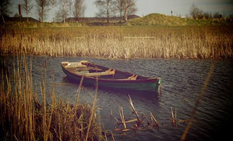 boat, lake, water, reeds, fields, country, rural