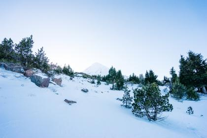mountain, snow, cold, winter, trees, bushes, sky, nature
