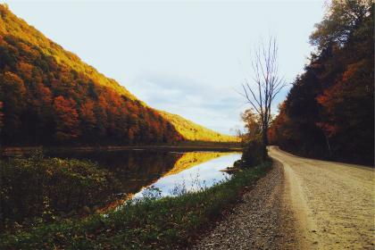 dirt, road, lake, water, trees, autumn, colors, sky, forest, hills