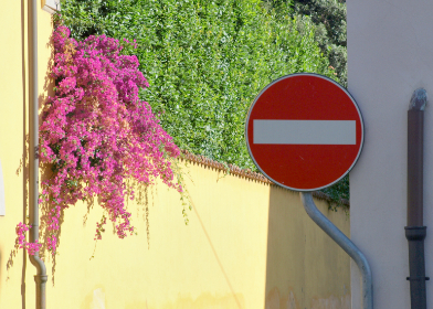stop,  sign,  street,  europe,  road,  traffic,  symbol,  warning,  city,  european,  flowers,  travel