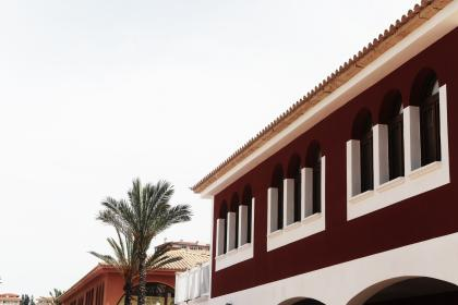 buildings, houses, windows, arches, palm trees, rooftops