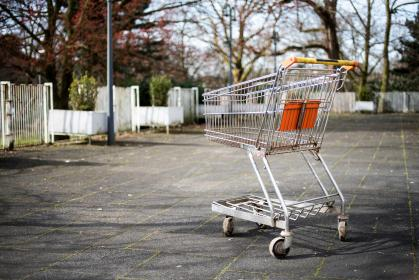 cart, grocery, outdoor, trees, plant