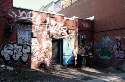 graffiti, spray paint, bricks, back door, alley, trash can, garbage, street, dirt