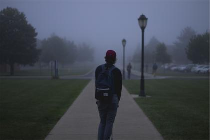 students, backpack, hat, young, guy, jeans, path, grass, lamp posts, parking lot, school, people