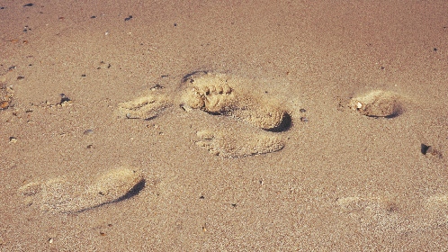 sand,  beach,  footprints,  feet,  walking,  summer,  vacation,  holiday,  coast, travel, relax, sunny