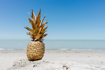 pineapple, dessert, appetizer, fruit, juice, crop, beach, ocean, sea, white, sand, waves, gold, paint, blue, sky