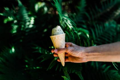 green, leaf, plant, nature, outdoor, ice cream, sweets, desserts, food, cone, hand