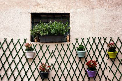 wall,  plant,  exterior,  window,  flowers,  box,  planter,  decoration,  pot,  hanging,  stone,  clay,  home,  house,  architecture