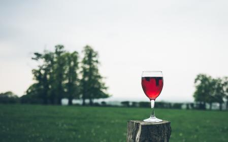red, wine, glass, beverage, drinks, green, grass, playground, trees, plants, view, outdoor