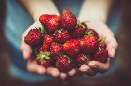 food, eat, fruits, strawberries, woman, girl, people, hands, picked, bokeh, red