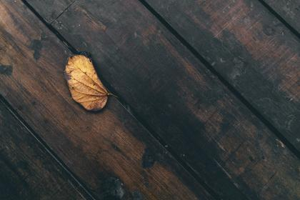 leaf, dried, wooden, table, things, still, wood, old