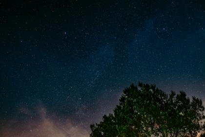 sky, night, stars, trees, galaxy, dark, nature, space, clouds