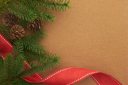 seasonal,  backgrounds,   christmas,  flat lay,  ribbon,  pine,  tree,  branches,  festive,  cone,  copyspace,  holiday,  red,  merry,  xmas,  background