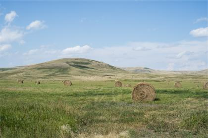 hay, bales, grass, fields, rural, country, blue, sky