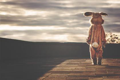 bunny, rabbit, costume, tail, clouds, sky, sunset
