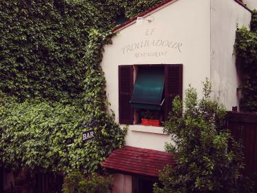 Le Troubadour, restaurant, France, vines, leaves, window, shutters