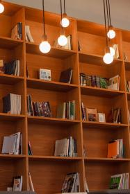 book, shelf, library, school, education, knowledge, light, bulb