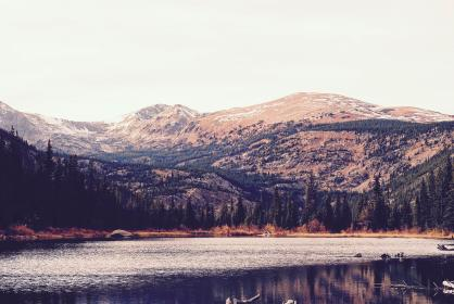 mountain, landscape, view, nature, trees, plants, forest,  grass, lake, water