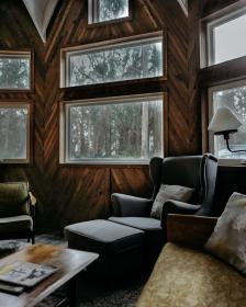 house, home, room, chair, sofa, relax, chill, pillow, nature, windows, trees, green, woods, forest, lamp, living room, table, sala