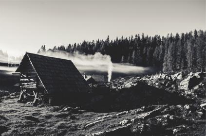 rural, trees, forest, rocks, huts, houses, black and white