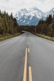 nature, road, travel, adventure, trees, woods, forest, green, mountain