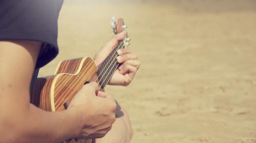 people, guy, guitar, music, musical, instrument, musician