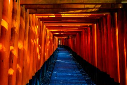 pathway, tunnel, pattern, gravel, torii, fushimi inari, shrine, kyoto, japan, travel, lamps, orange, vermilion, tourist spot, landmark