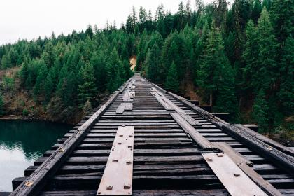 wood, bridge, old, forest, trees, woods, water, lake, nature, outdoors