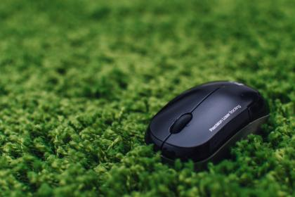 free photo of mouse  business