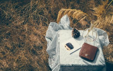 grass, nature, outdoor, travel, table, cloth, pouch, pine, cone, glass, flower, vase, magazine