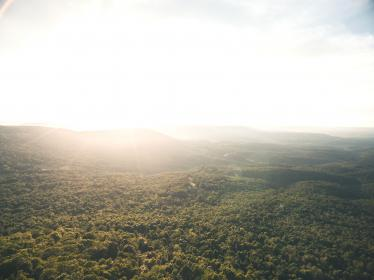 nature, landscape, trees, woods, forest, aerial, travel, adventure, grass, green, field, sun, clouds, sky